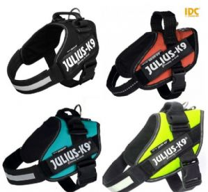 Julius K9 IDC Harness | Strong Dog harnesses | for active dogs